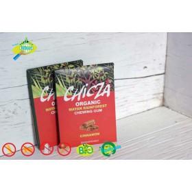 Chewing gum cinnamon
