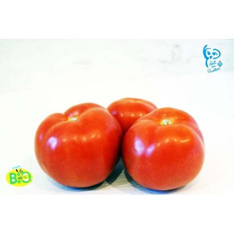 Tomates de serre Bio