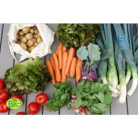 Panier des légumes de saison fraîchement récoltés